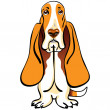 Vector dog Basset Hound breed — Stock Vector #6830455
