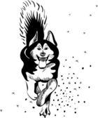Vector alaskan malamute hondenras — Stockvector