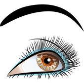 Vektor Closeup schöne weibliche Auge — Stockvektor