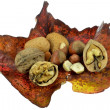 Stock Photo: Selection of mixed nuts