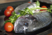 Wellness and diet. Fresh fish — Stockfoto