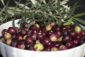 Close-up of Italian black olive — Stockfoto