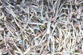 Paper strips — Stock Photo