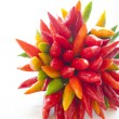 Bouquet of pepper — Stock Photo