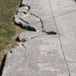 Sidewalk damage — Stock Photo #6924341