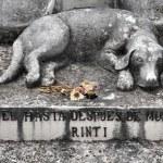 Dog grave — Stock Photo