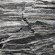 Gneiss rock — Stock Photo