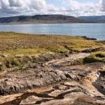fiordo in Islanda — Foto Stock
