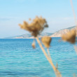 View of Kefalonia,  Greece — Stock Photo