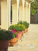 Detalle del convento san gerasimosa en kefalonia — Foto de Stock