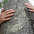 Stock Photo: Tree hugger