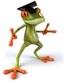 Frog student — Stock Photo