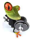 Business Frog — Foto de Stock