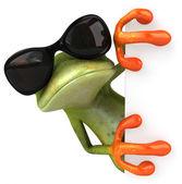 Kikker met zonnebril — Stockfoto