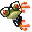Frog &amp; glasses - Stock Photo