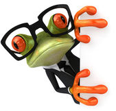 Frog & glasses — Stockfoto