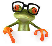 Frog & glasses — Stock Photo