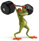 强青蛙 — 图库照片