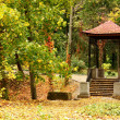 Chinese gazebo in autumn park — Stock Photo