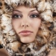 Fur around the face — Stock Photo #6765348