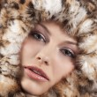 Fur around the face — Stock Photo #6765360