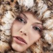 Fur around the face — Stock Photo