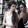 2 beautys elegant dressed outside — ストック写真