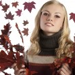 Natural blonde beauty holding some autumn leaves - Stock Photo