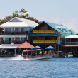 Coast in Bocas Town — Stock Photo