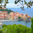 Collioure view from hill — Stock Photo