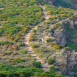 Mediterranean trail - Stock Photo