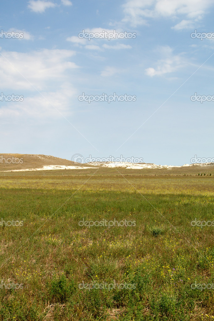 Steppe in the summer in the Crimea — Stock Photo #6950699