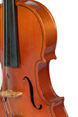 A fragment of a violin isolated on a white background — Stock Photo