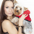 Girl with cute yorkshire terrier dog — Stock Photo