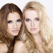 Two girl friends - blond and brunette — Stock Photo #7954882