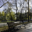 An age-old bench is in an autumn park. — Stock Photo #7655413