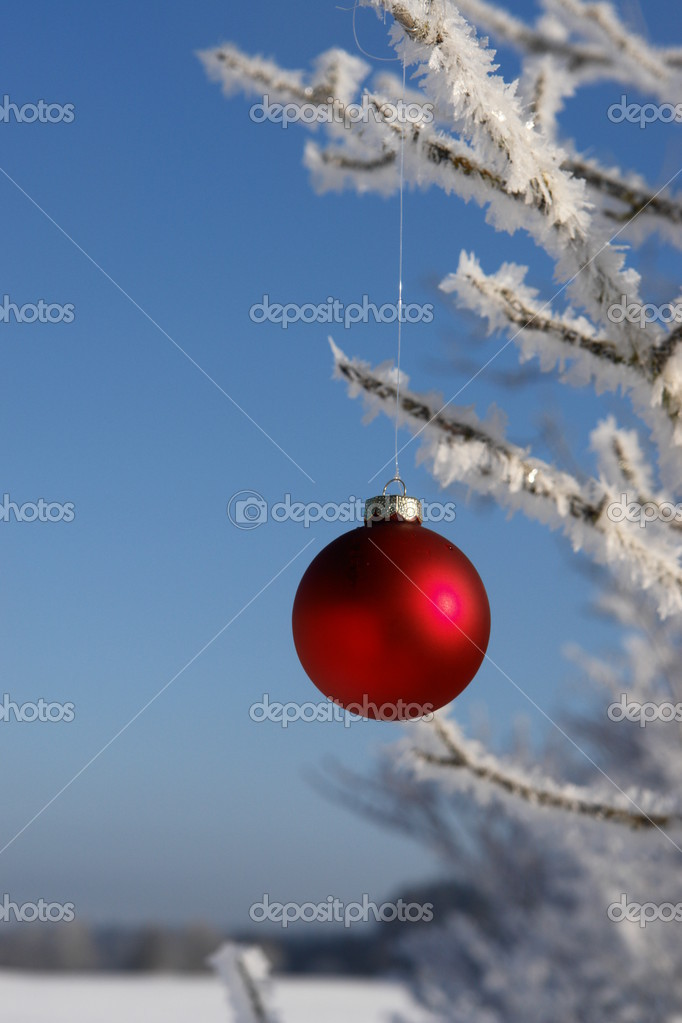 A red bauble in snowy winter landscape — Stock Photo #7502343