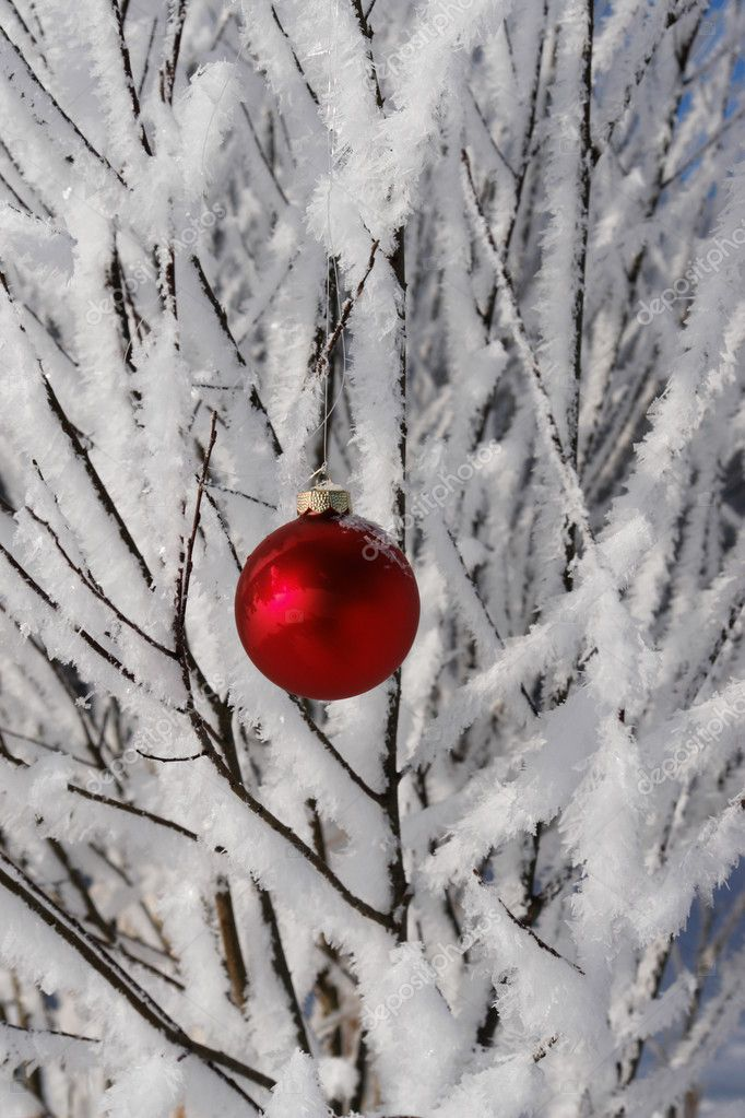 A red bauble in snowy winter landscape — Stock Photo #7502352
