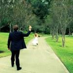 Runaway Bride, cross processed — Stock Photo #6769408
