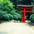 Man, Woman under red Asian gate, intentional blur, cross process — Stock Photo