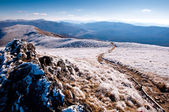 Bieszczady Mountain covered by frost. — Stock Photo