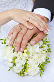 Hands young on a bouquet — Stock Photo