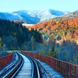Railway on bridge and first autumn snow — Stock Photo