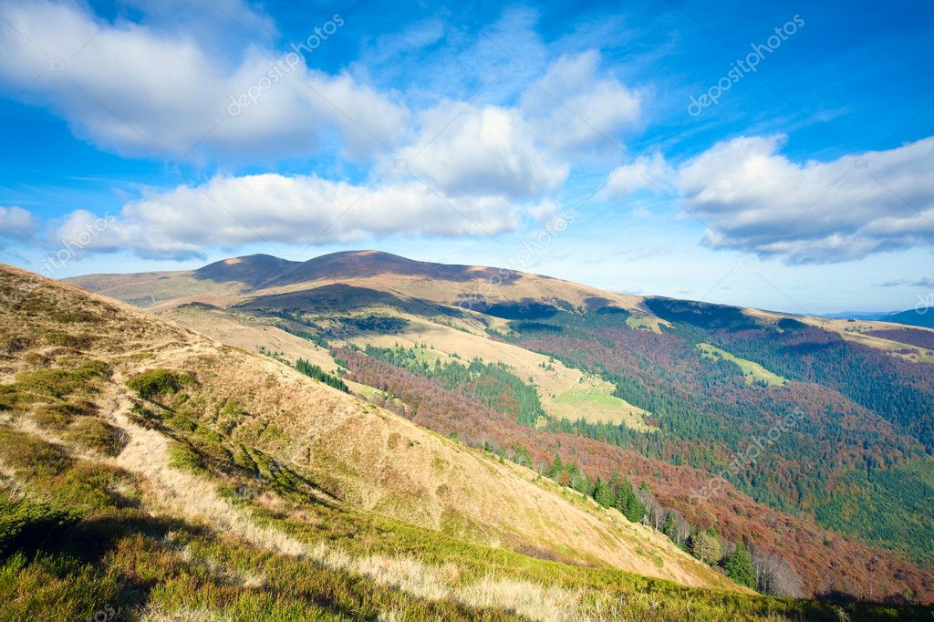 Autumn mountains  with a stark bare trees on forest edge in front (Carpathian, Ukraine). — Stock Photo #6864268