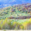 Stock Photo: Autumn country landscape (Carpathian, Ukraine).