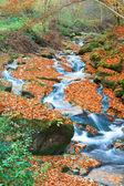 скалистые осень поток — Стоковое фото