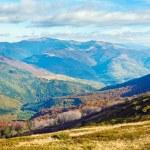 podzimní hory a neúprosná holé stromy — Stock fotografie
