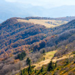 Foto Stock: Autumn mountains and stark bare trees