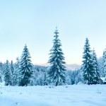 Winter sunset mountain landscape — Stock Photo #7004248