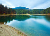 Autumn Synevir mountain lake — Stock Photo